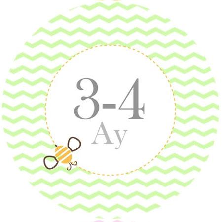 3-4ay