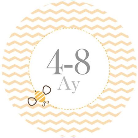 4-8ay